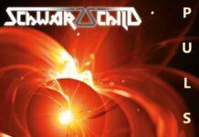 Schwarzschild - Pulsar