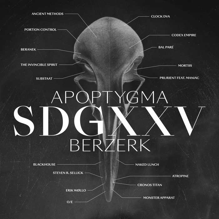 Apoptygma Berzerk - SDGXXV Image